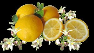 válogatott C-vitamin por, tabletta és cseppek felnőtteknek
